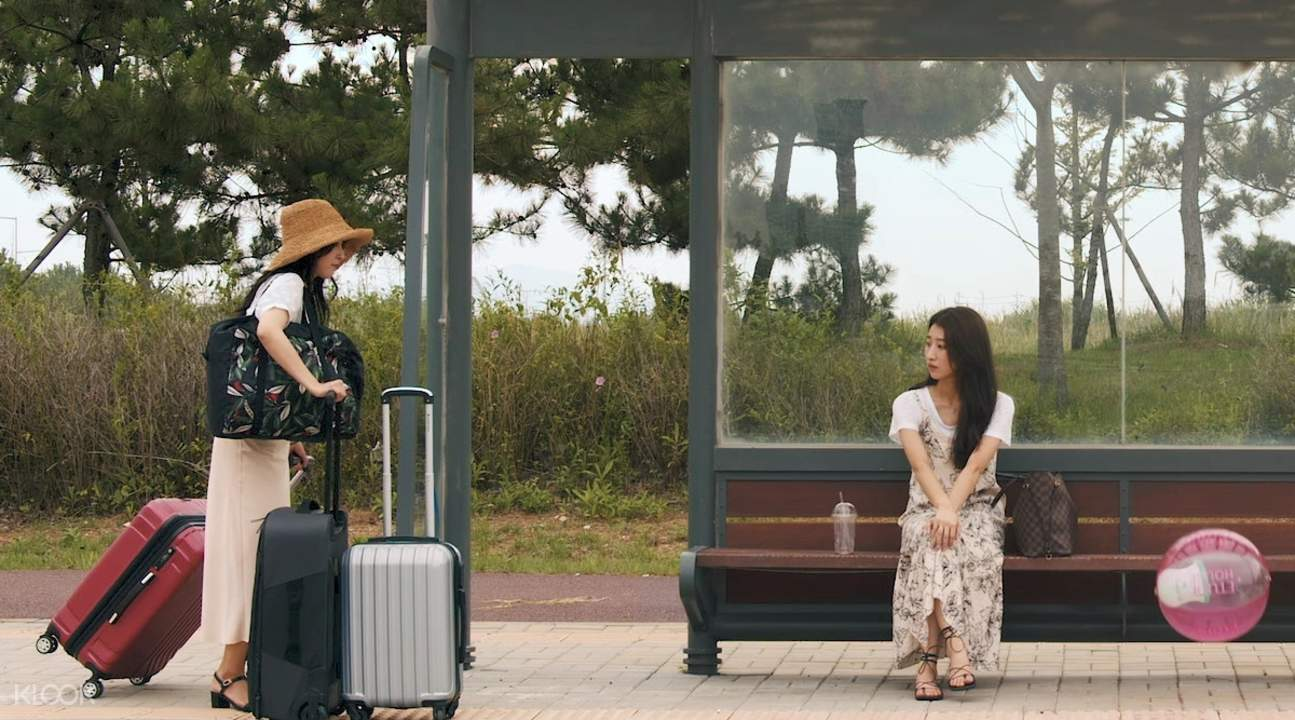 tourists bringing luggage in waiting shed